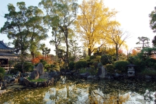 神社内の庭園が良い雰囲気。