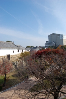 工事中の姫路城を見に来ることが出来てほんとによかった!