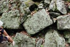 よく見ると石垣に色々なマークがあります。