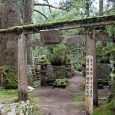 姫路の酒井家。