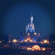 夜のディズニーは、本当に綺麗ですよね。