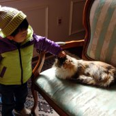 息子も猫ちゃん、だ~いすき。