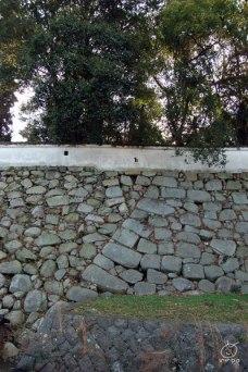 石垣がyの字になってます。右側が黒田時代、その後の細川さんが積んだ石が左側だそうです。