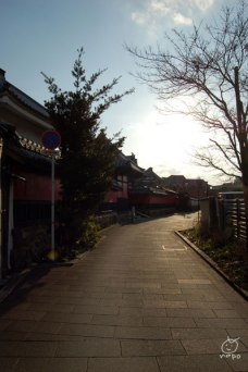 中津の城下町を歩きます。寺だらけ。
