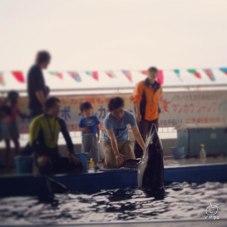 イルカに触れてご満足なお二人。