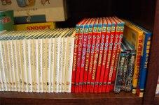 ライブラリーにトーマス本がたくさんあって息子が熱中。