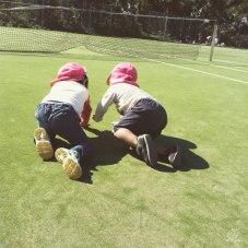 仲良しの子とじゃれあって遊んでます。