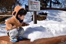 去年、鹿児島で大雪を見たはずだけど、覚えてないみたい。すごく雪にビビってた次男。