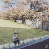 桜アイス美味しいです。
